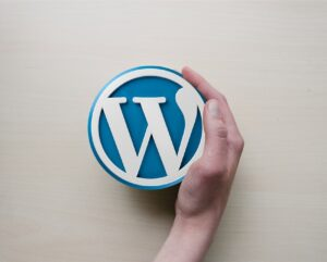 iweb_web_agency_wordpress_cms